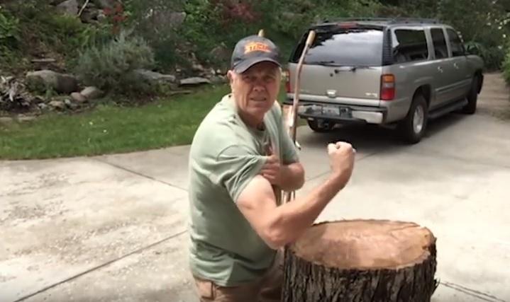 log-lifter