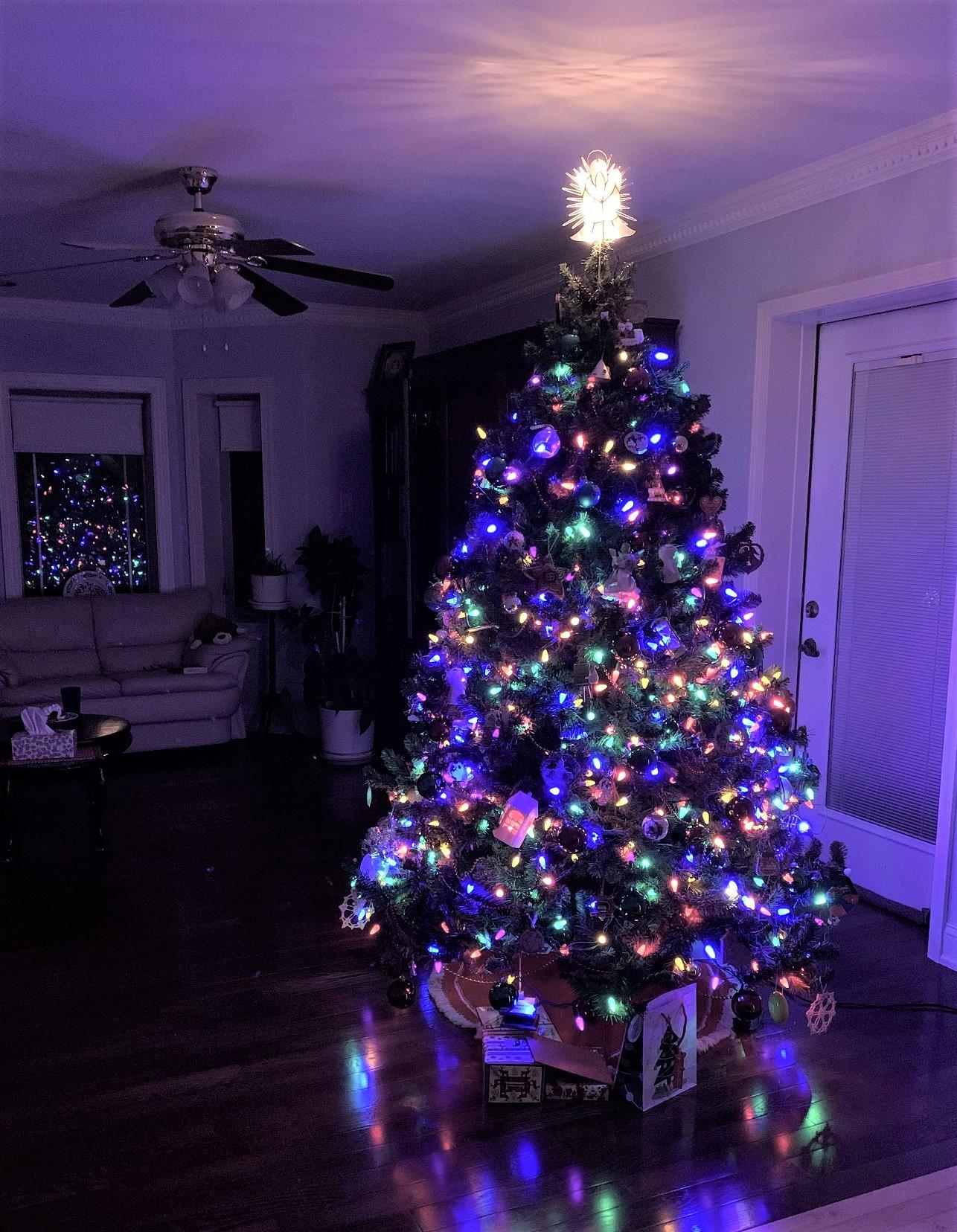 2020-12-29 Christmas Tree