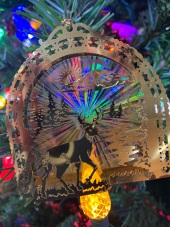 2020-12-29 Ornament10