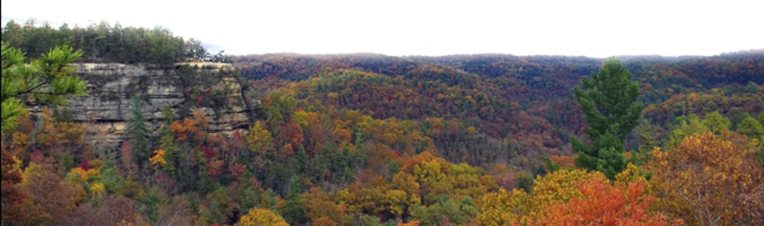 2021-07-24 Fall in Kentucky